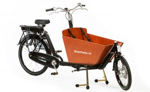 Cargo-bike-short