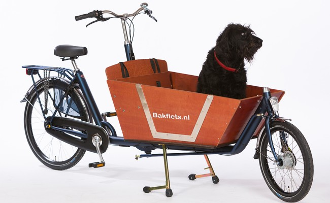 Bakfiets-NL-Doggy-Door-closed